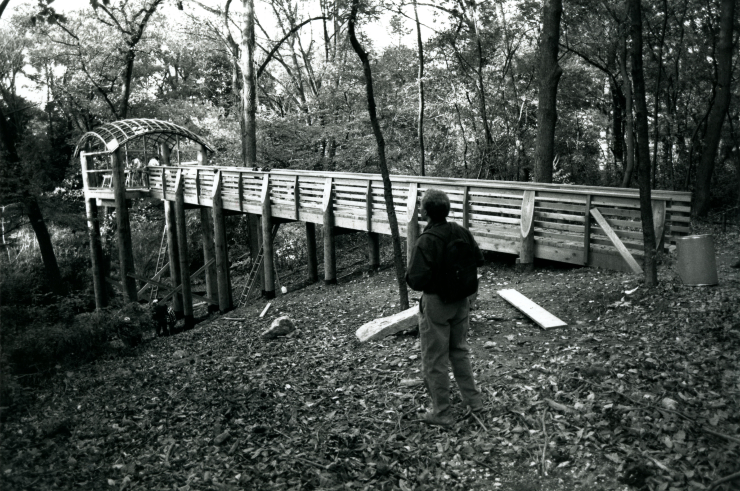 Martin Puryear at Pavilion in the Trees in Fairmount Park