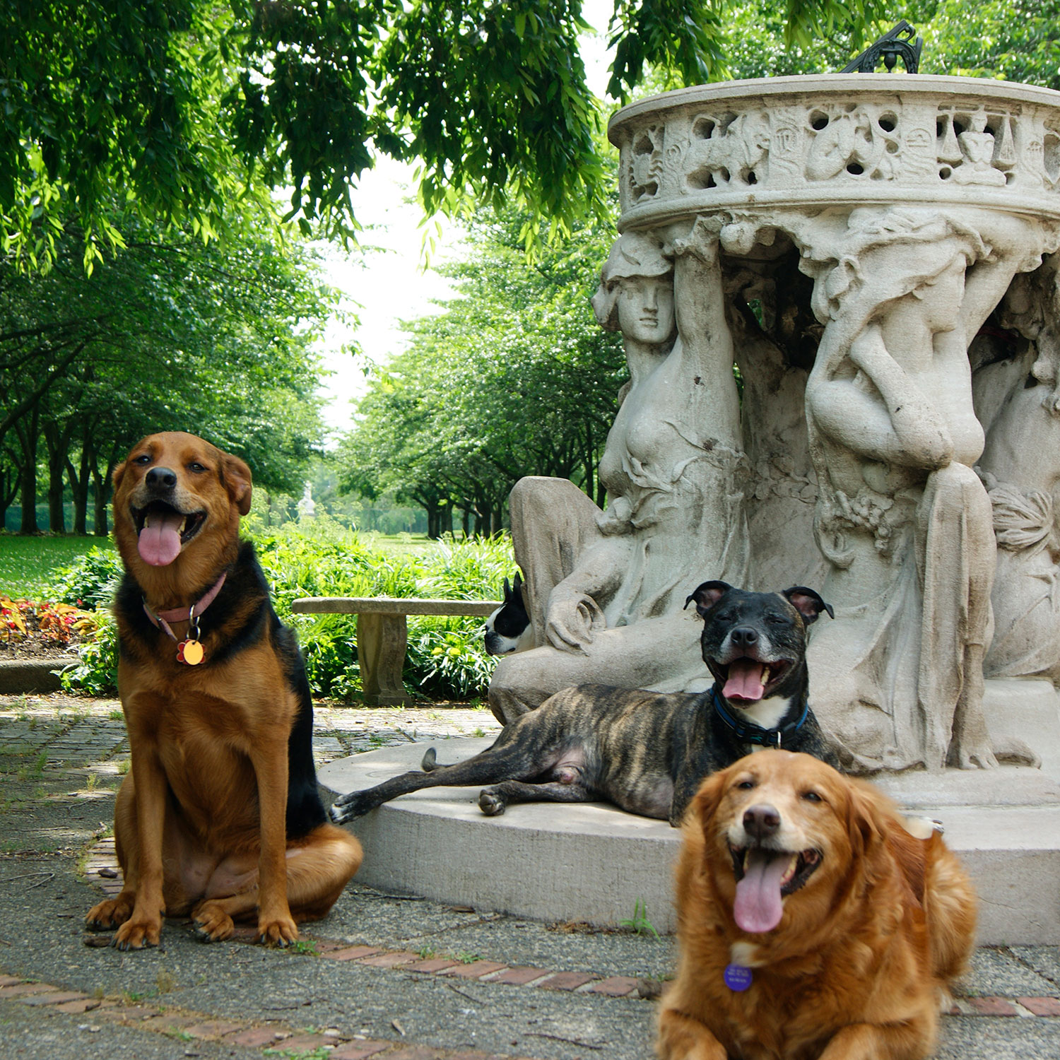 A squad of dogs pose with Alexander Stirling Calder's Sundial sculpture