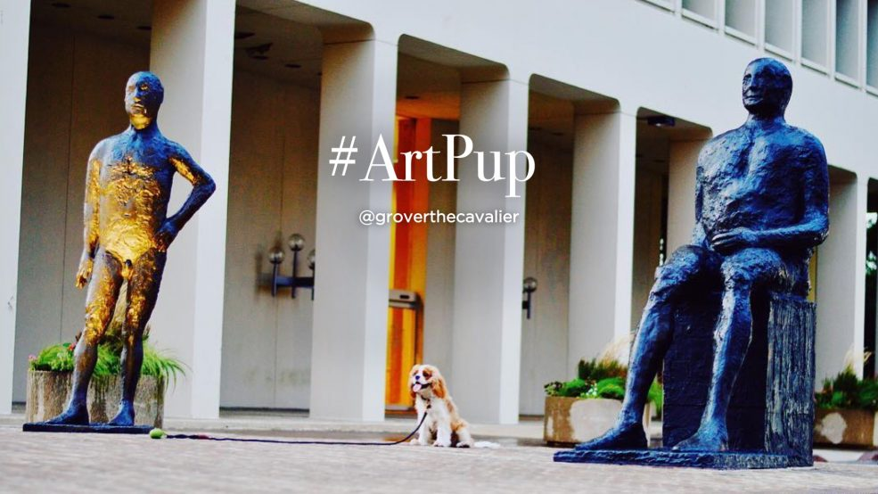 #ArtPup Grover (@groverthecavalier on Instagram)